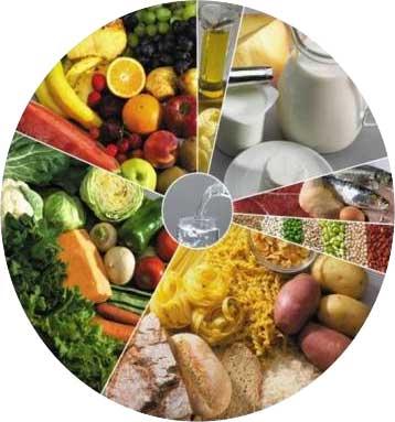 Los seis grupos de alimentos fundamentales