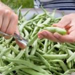 Receta vegetariana con judías verdes