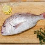 Importancia del pescado en la Dieta y consejos para comprarlo