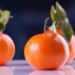 Aprender Los Entresijos De La Buena Nutrición