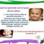 Asesoria Nutricional. Importancia de la Nutrición Infantil