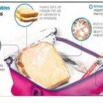 Loncheras nutritivas que mejoran la nutrición infantil | Comida Saludable